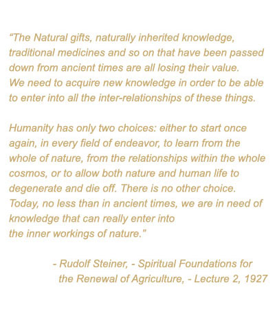 agriculture spiritual foundations for the renewal of agriculture